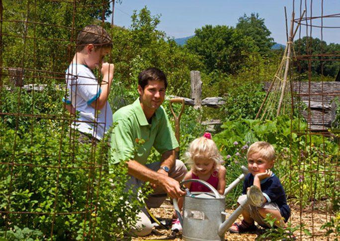 organic garden at mountain air
